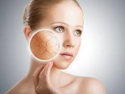 Кожата-огледало на вътрешните органи